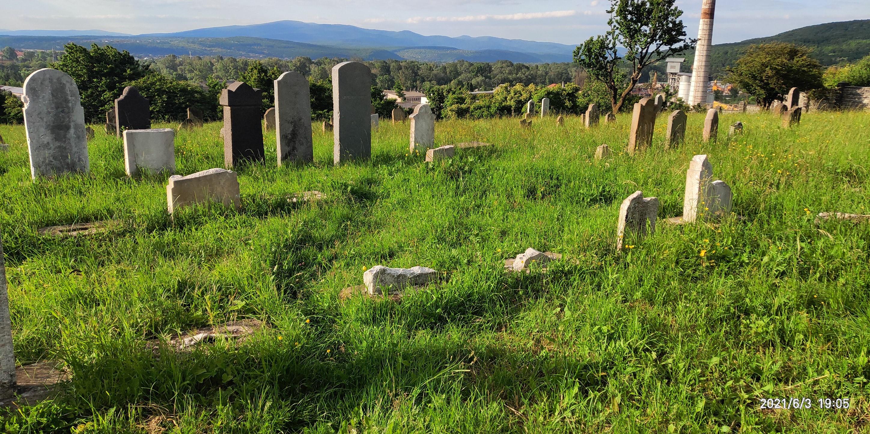 еврейское кладбище радванка ужгород