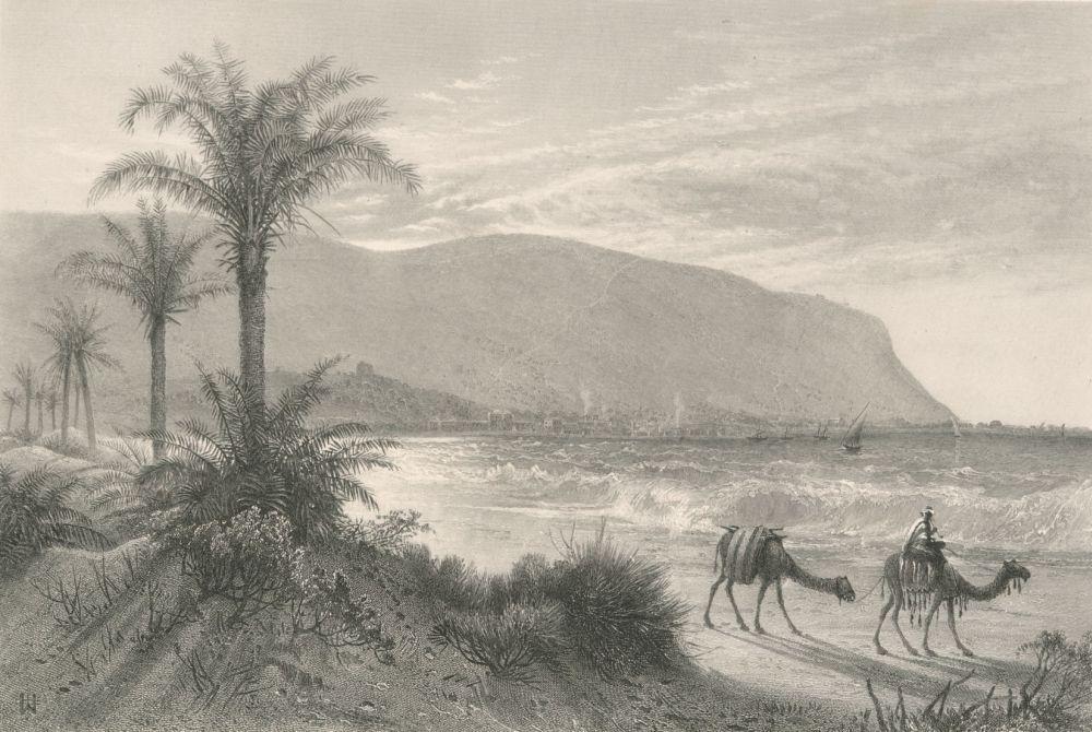 Хайфу с подножия горы Кармель сфотографировал в 1881-1884 годах британский географ сэр Чарльз Уильям Уилсон